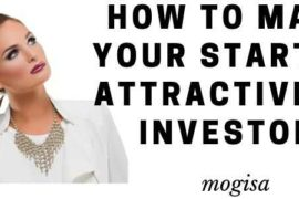 make-your-startup-attractive-to-investor-mogisa